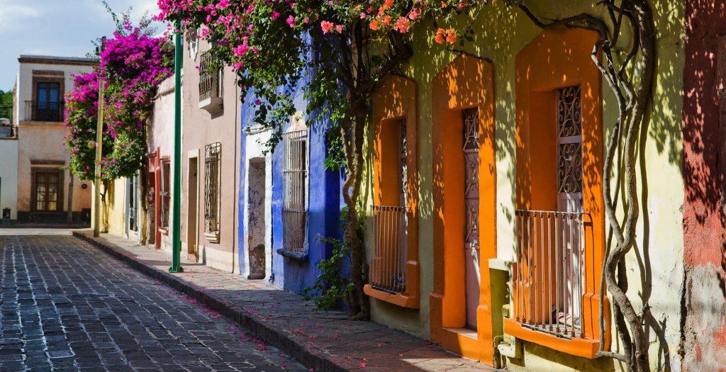 I Reunión Anual – Querétaro