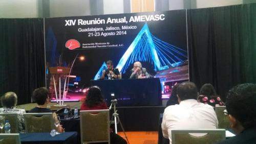 AMEVASC 2014 Guadalajara (3)