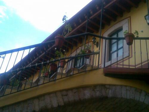 AMEVASC Zacatecas (3)