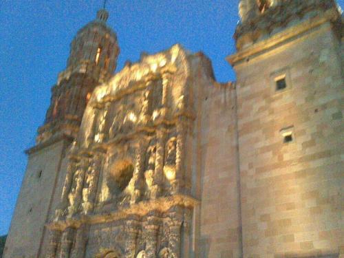 AMEVASC Zacatecas (7)